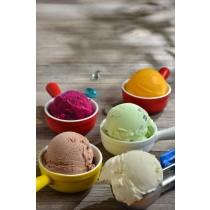 MARO義式冰淇淋 16oz*4(家庭裝)