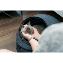EGGY小宅包 - 貓背包